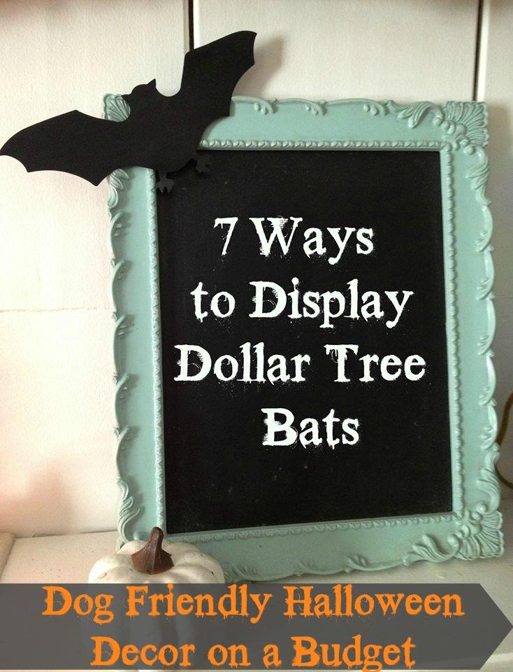 dog friendly halloween decor on a budget bats