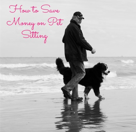 How to Save Money on Pet Sitting