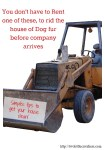 How to Rid the House of Dog Fur Before Company Arrives