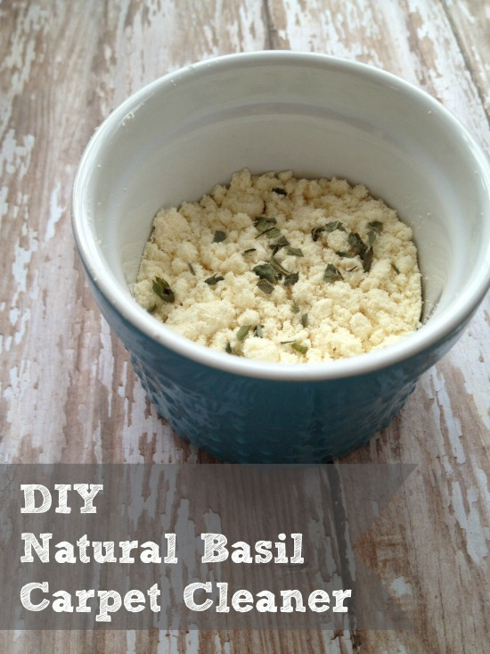 DIY Natural Carpet Cleaner Scented with Basil