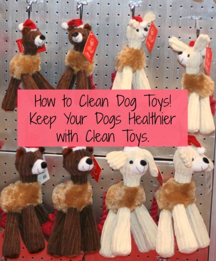 How to Clean Dog Toys - Simple Steps to Keep Your Dog Healthy