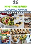 Blueberry Recipes To Make Every Meal Special