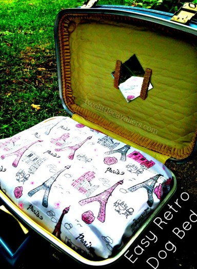 Make Your Own Deluxe Dog Bed Retro Dog Bed, Suitcase Dog Bed