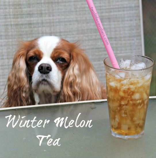 Winter Melon Tea is perfect for cooling after a day outside
