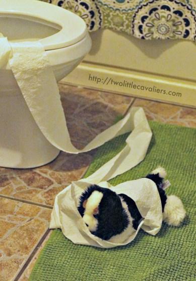 Elf on the Shelf Alternative Toilet Paper Mess