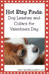 Hot Etsy Finds Leashes and Collars for Valentines Day