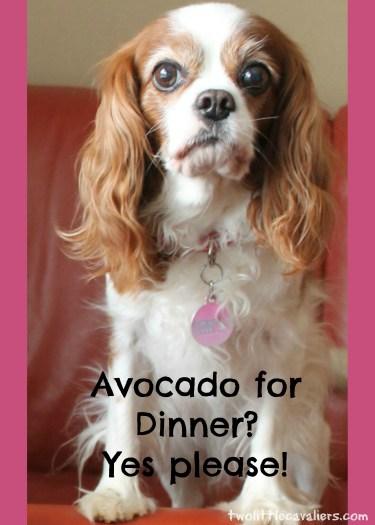 Avocado for dinner #AvoDermNatural