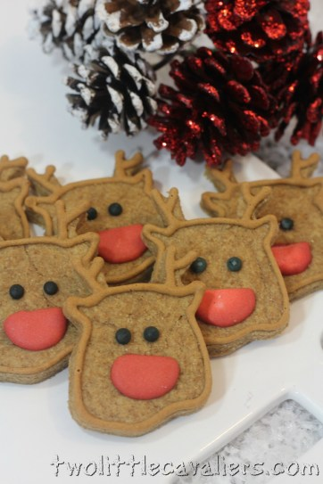#Yummy Reindeer Dog Treats #Recipe
