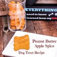 Recipe: Peanut Butter Apple Spice Dog Treats