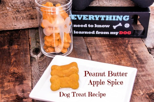 Recipe - Peanut Butter Apple Spice Dog Treats