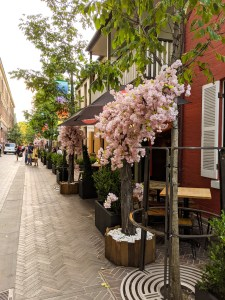 ulica z kwiatami