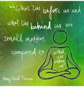 meme photo of Henry David Thoreau quote