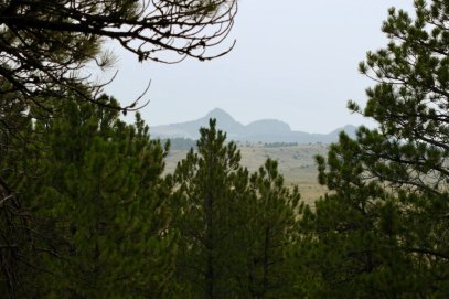 Photo: View to the east from Dogcamp