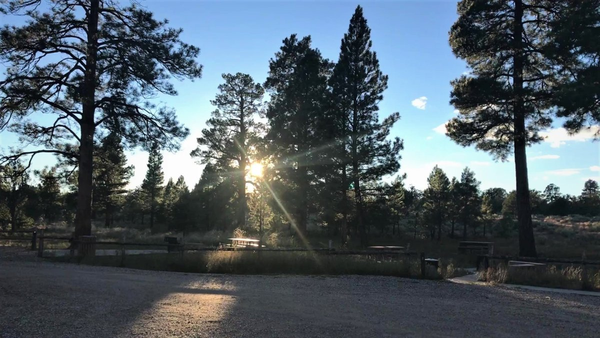 Campsite Review: Ponderosa Grove Campground near Kanab, Utah