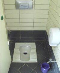 Indian Toilet Design Layout   Home Decor & Renovation Ideas