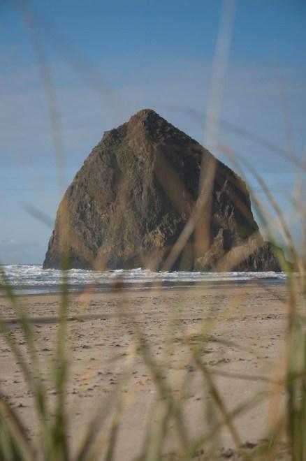 Haystack Rock Hides
