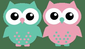 two_owlettes_groen_en_roze-300x173 Categorieën