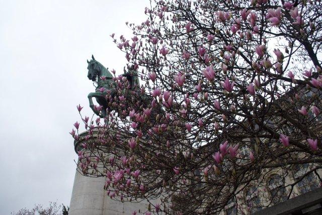 lente-in-Parijs-1024x685 Op stap in Parijs met een kind