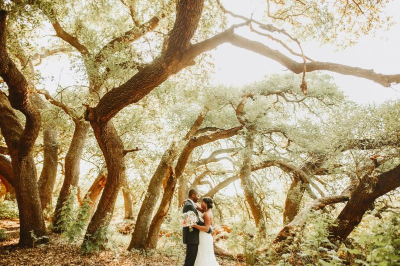 camp_lucy_sacred_oaks_wedding