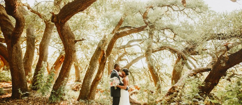 camp lucy sacred oaks wedding