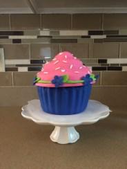Gigantic cupcake!