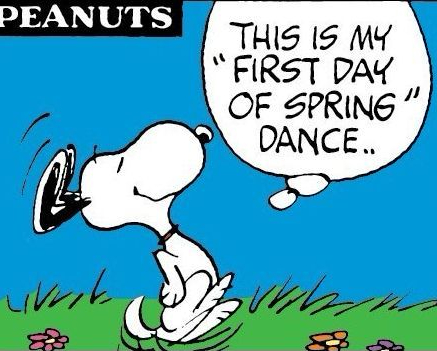 Snoopy in the Spring