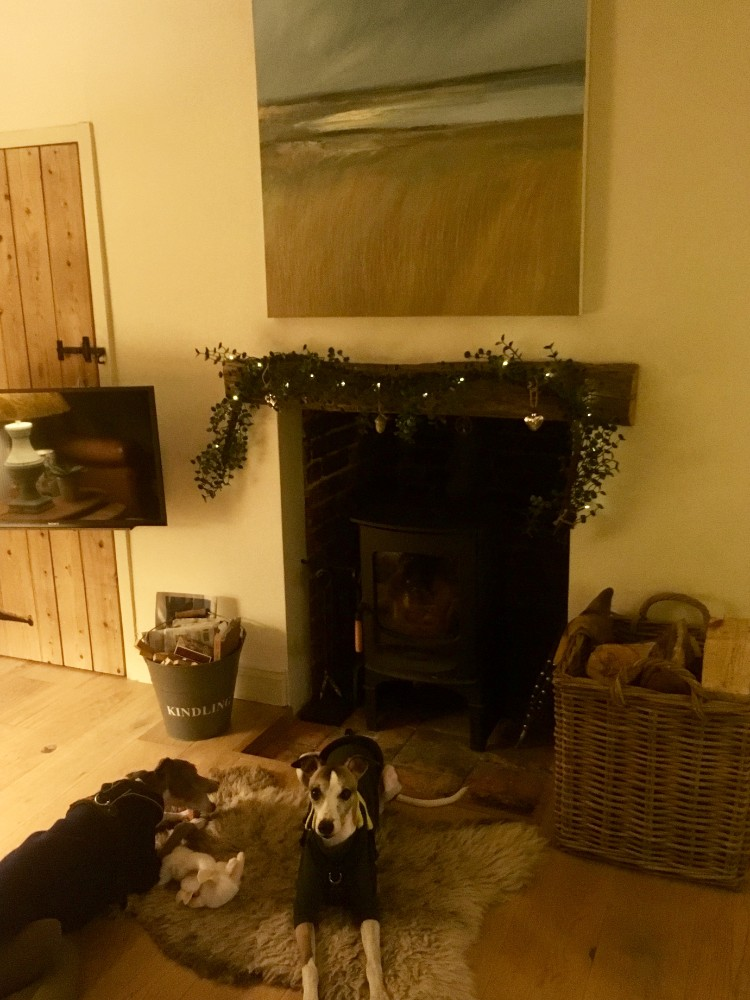 living room at Cow Parsley cottage
