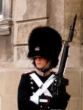A Royal Guard - Copenhagen