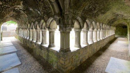 145472-Sligo-Abbey