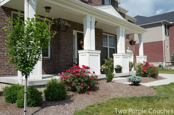 front porch archives - two purple