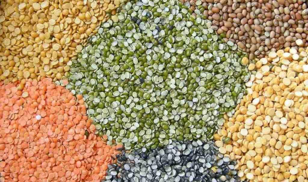 Variety of split lentls or indian dals