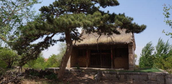 dragon king temple