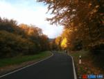 Berdorf Trail road view, trekking, travelling,luxembourg, berdorf, twosomelife, mullerthal,Echternach, hiking, biking