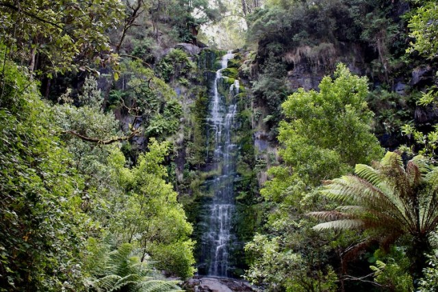 Erskine falls, best waterfalls on Australias East Coast