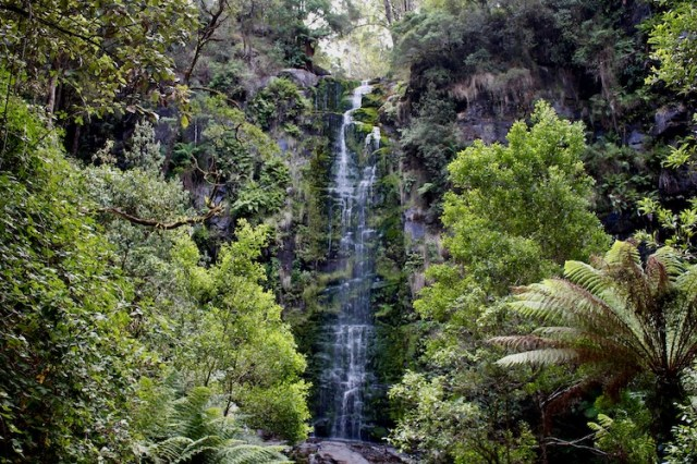 Erskine falls, best waterfalls on Australias East Coast