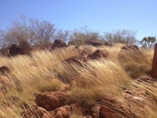 Kunjarra - a big pile of red rocks and spinifex