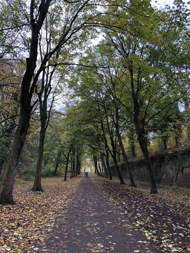 walk lille, park lille