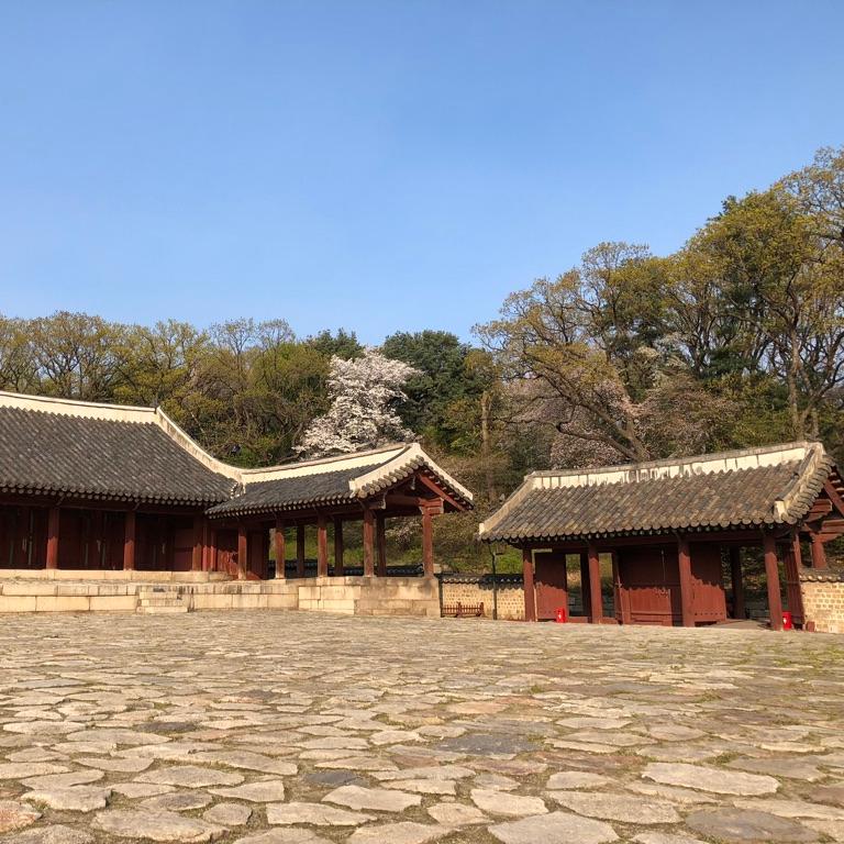 Seoul Itinerary Travel Tips Jongmyo Shrine