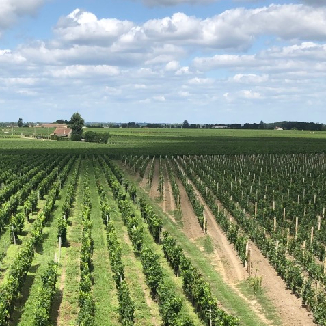 Northern Western France Driving Road Trip Itinerary Travel Tips Bordeaux Wine