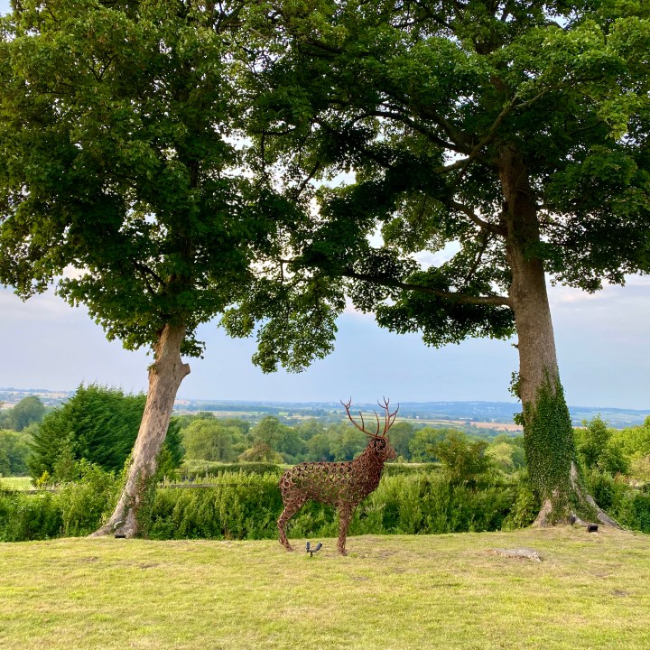 The Feathered Nest Country Inn Restaurant Pub Amazing View Cotswold Outdoor Dining Gastropub Dog Friendly Stag Garden Sculpture