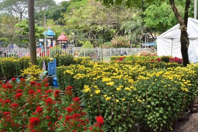 Flower Market Ho Chi Minh City Vietnam Saigon Backpacker's Guide to Vietnam