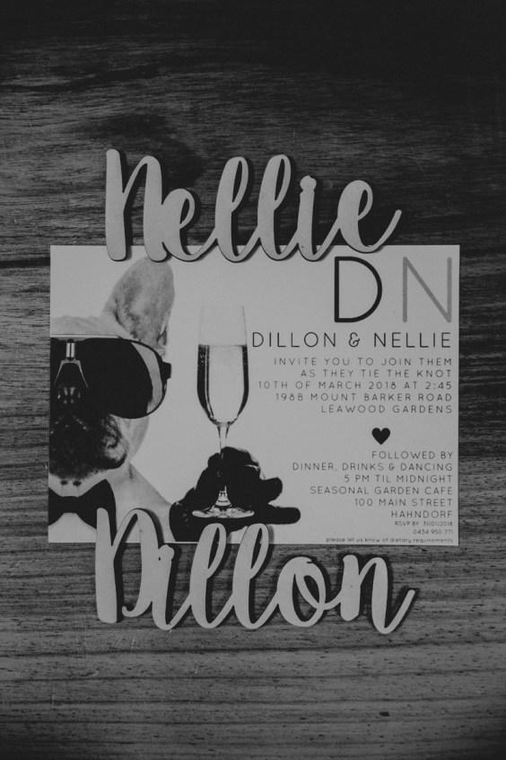 Nellie Dillon-002