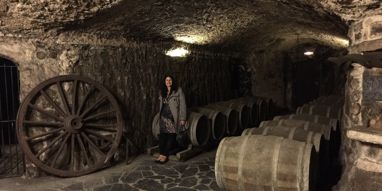 Learning About Wine in Rioja Spain