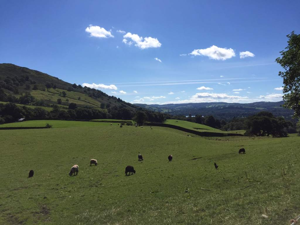 """Another lovely picture from our walk - """"An Introduction to England's Lake District"""" - Two Traveling Texans"""