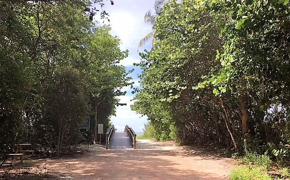 """It's a short walk from the parking lot to Tarpon Bay Beach. - """"The Search for Sanibel Island Shells"""" - Two Traveling Texans"""