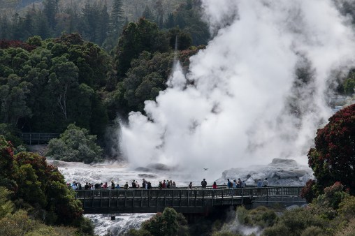"""the two geysers at Te Puia: """"Prince of Wales Feathers"""" and """"Pohutu"""""""