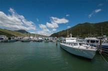 Harbour of Havelock
