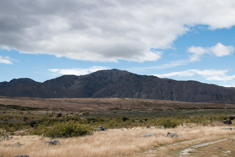 steppes and mountains–the area at Lake Tekapo is rough