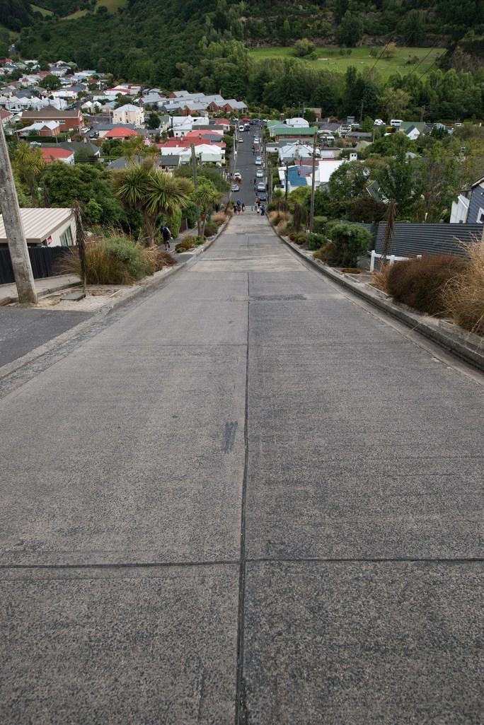 The steepest residential street in the world