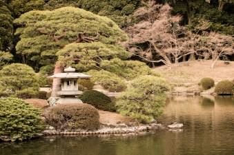 The Japanese Garden in Gyoen Park